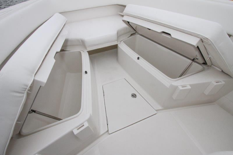 2019 Jupiter 30 HFS - Forward Seating Storage