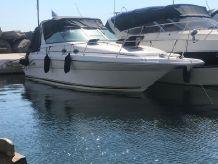 1995 Sea Ray Sundancer 290