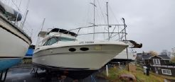 2000 Sea Ray 370 Aft Cabin FRESH WATER ONLY