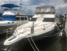 1999 Sea Ray 450 Express Bridge