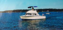 1986 Bertram 28 Flybridge