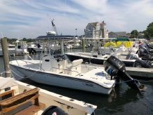 2003 Boston Whaler Dauntless 220