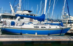1984 Hunter 37' Cherubini Cutter