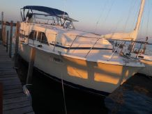1979 Chris-Craft Catalina Double Cabin