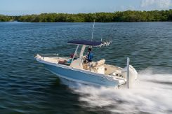2021 Boston Whaler 220 Dauntless