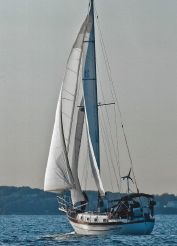 1985 Young Sun 35 Cutter