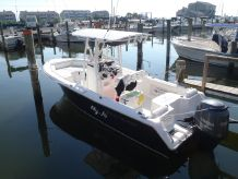 2014 Sea Hunt Triton 225