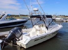 2006 Sea Hunt Victory 207