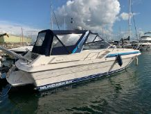 1987 Sunseeker Rapallo 36