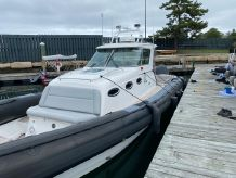 2010 Protector 38