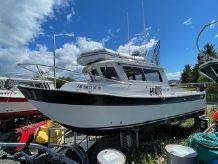 1997 Sea Sport Seamaster 2700
