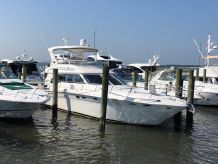 2001 Sea Ray 480 Sedan Bridge MD