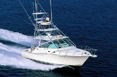 2002 Cabo 35 Express - Manufacturer Provided Image
