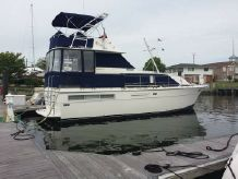 1977 Bertram 42 Flybridge Motor Yacht