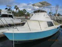1979 Bertram 31 Flybridge
