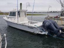 2020 Steiger Craft 255DV Miami