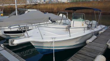1998 White Shark 215