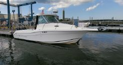2013 Seaswirl Striper 2601 Walkaround