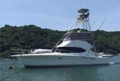 2009 Riviera 45 Sportsfisher Motor Yacht