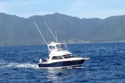 1996 Cabo 35 Flybridge Sportfisher