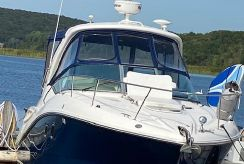 2009 Sea Ray Sundancer 310