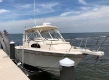 2019 Grady-White Marlin 300
