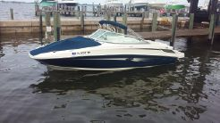 2008 Sea Ray 210