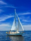 1981 Sea Sprite 28