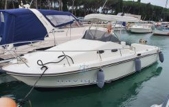 2002 Custom Royal Yacht Group Harpoon 255 Walkaround