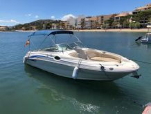 2001 Sea Ray 240 Bow Rider