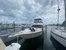 1988 Tiara Yachts 3600 Convertible
