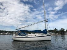 1989 Nonsuch 33