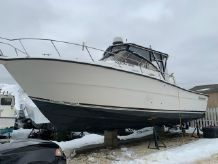 2001 Shamrock 290 Offshore