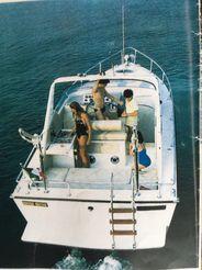 1983 Fiart aster 31