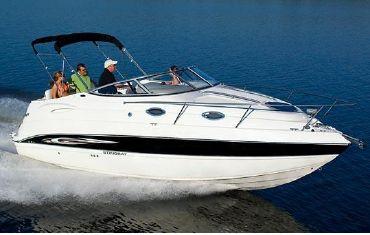 2010 Stingray 250 CS