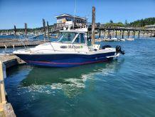2017 Seaswirl Striper 2301