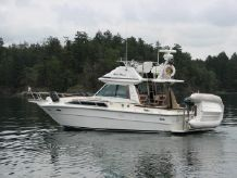 1983 Sea Ray SRV 310 Command Bridge
