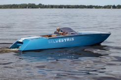 2008 Custom Silvestris 23 Sports