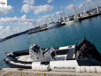 2017 Pro Marine manta 610