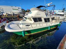 2000 Sea Sport Pacific 3200