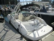 2010 Sea Ray 200 Sundeck
