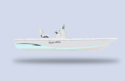 2022 Blue Wave 2200 Pure Bay