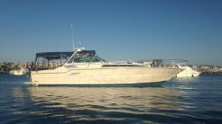 1987 Sea Ray Express