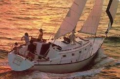 1980 Hunter Cutter