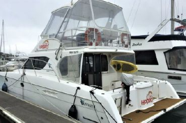 2006 Voyager Discovery 1100