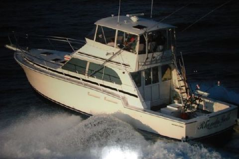 2001 Southern Cross 4800 Sportfish - Photo 1
