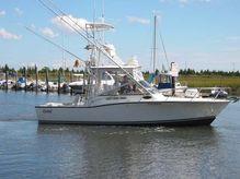 2001 Carolina Classic 28 express Fish
