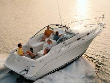 1999 Sea Ray 270 Sundancer Special Edition