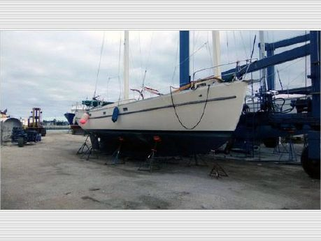 1979 Freedom Sail