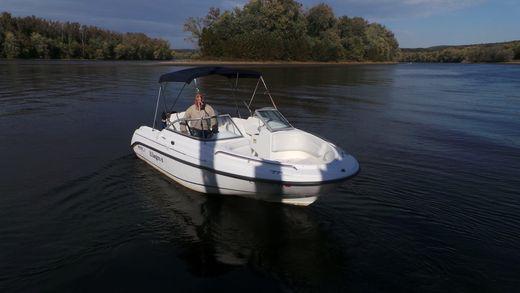 2002 Boston Whaler 18 Ventura